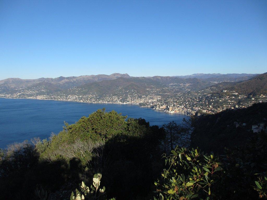 Panoramica su Camogli,Recco,Sori ecc...