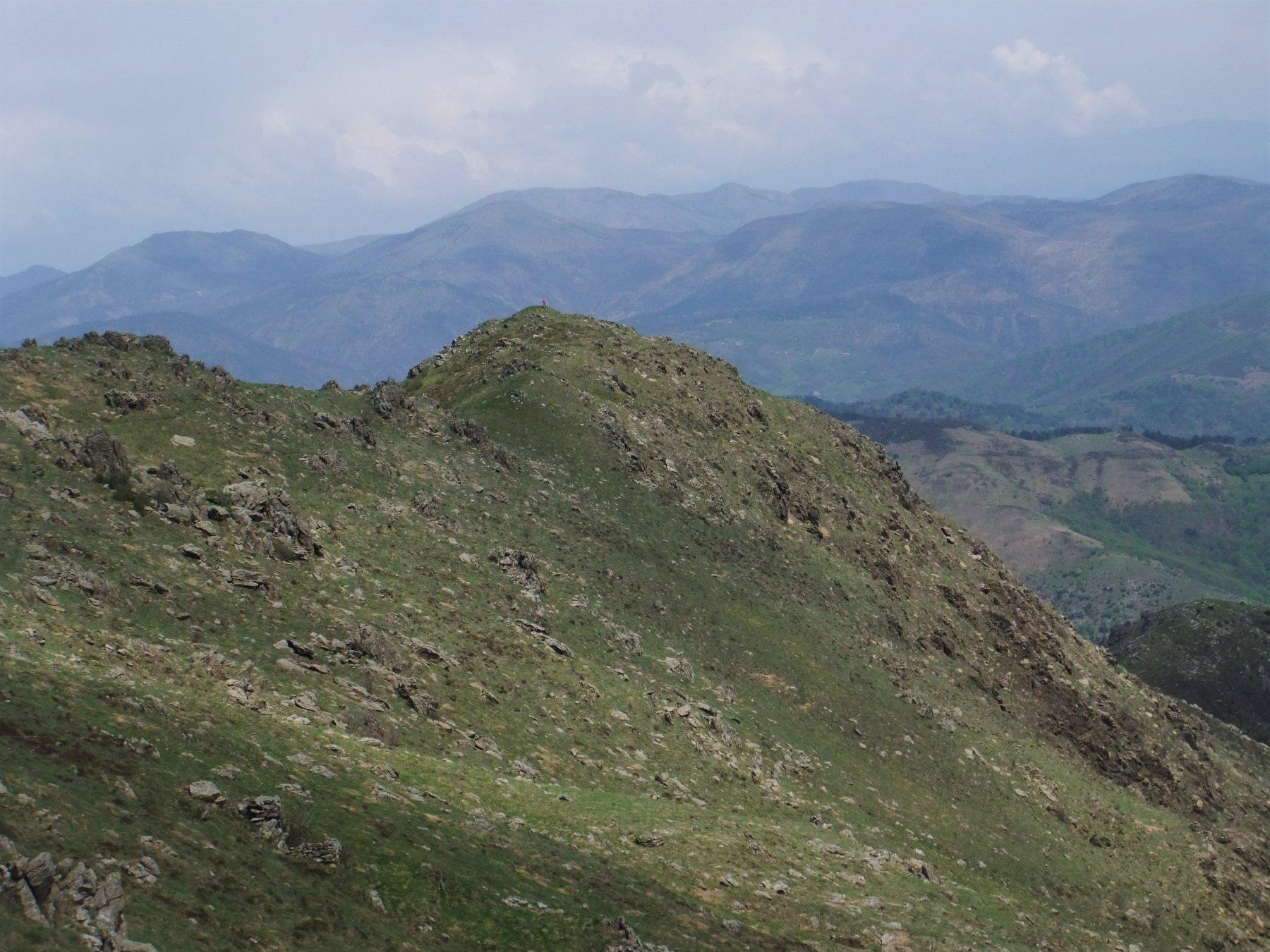Biscia (Pian della) da Passo del Faiallo, anello per la Valle Cerusa 2020-04-25