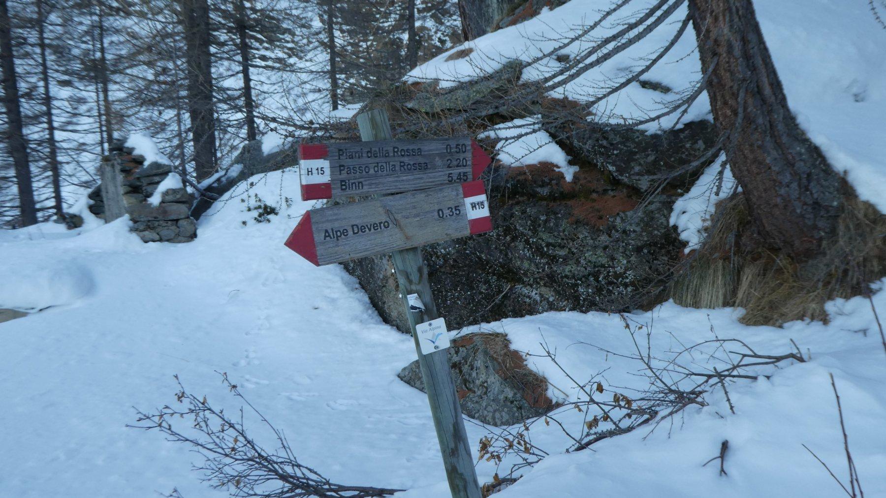 altro cartello indicatore, poco sopra l'Alpe Campello