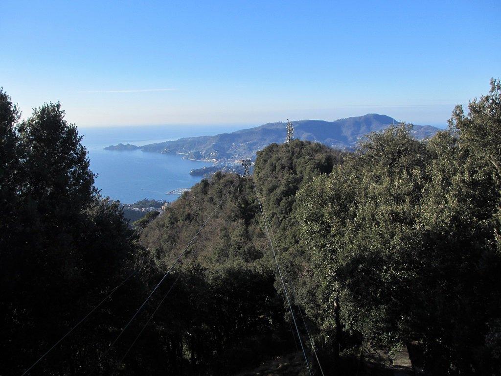 Panoramica dalla funivia Montallegro