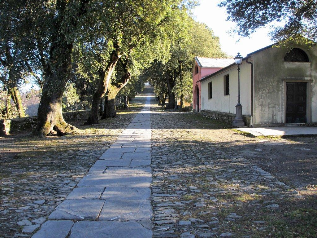 Viale lastricato che conduce alla Basilica N.S.Montallegro