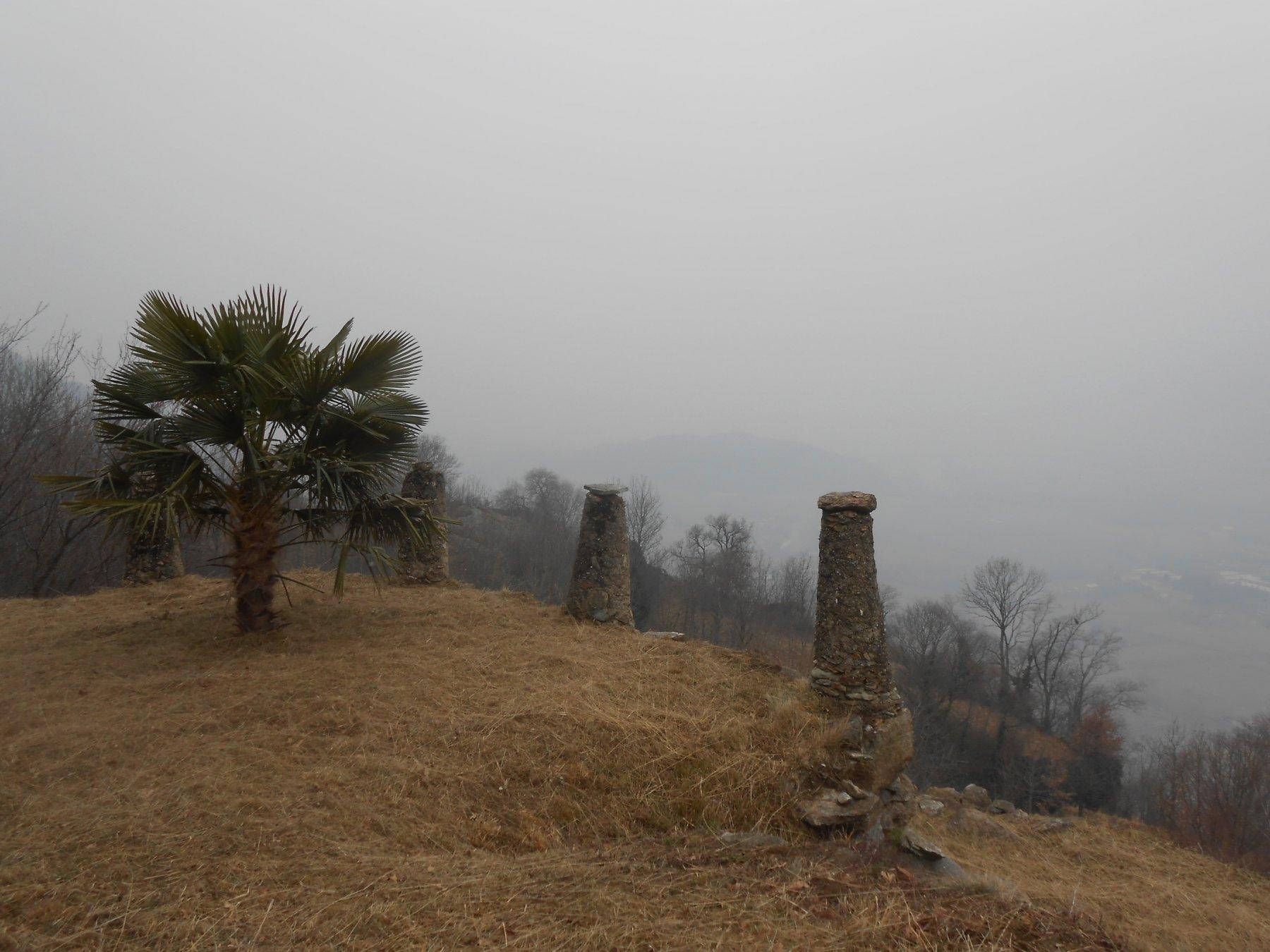 panorama, quasi a Nomaglio