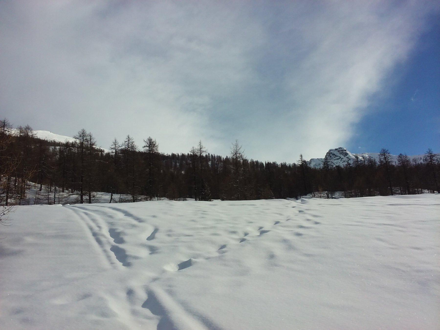 Al pianoro Seleigon: in alto a sinistra, i pendii che si risalgono fino alla cresta.