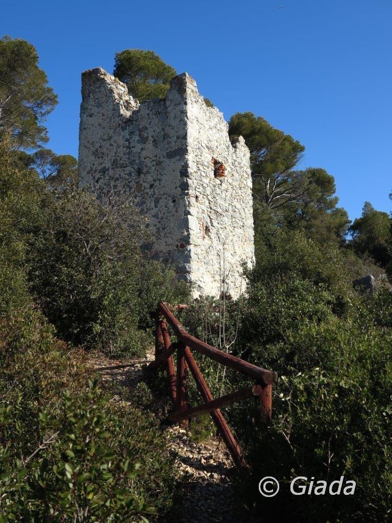La Torre delle streghe