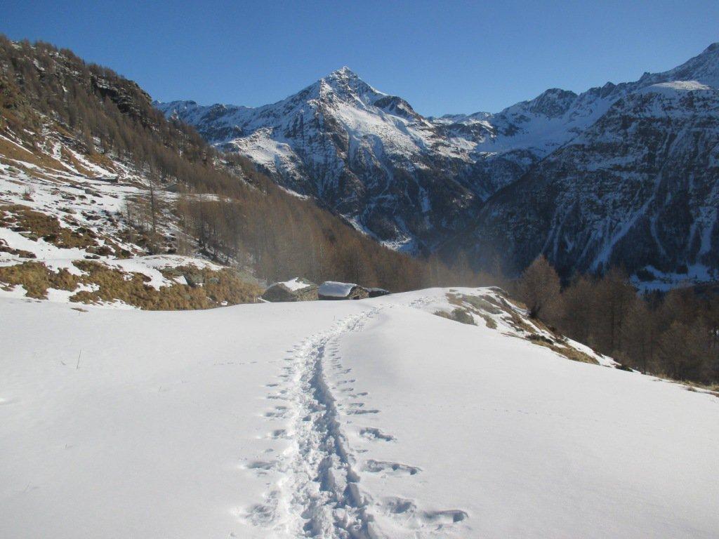 oltre l'alpe Colvedro