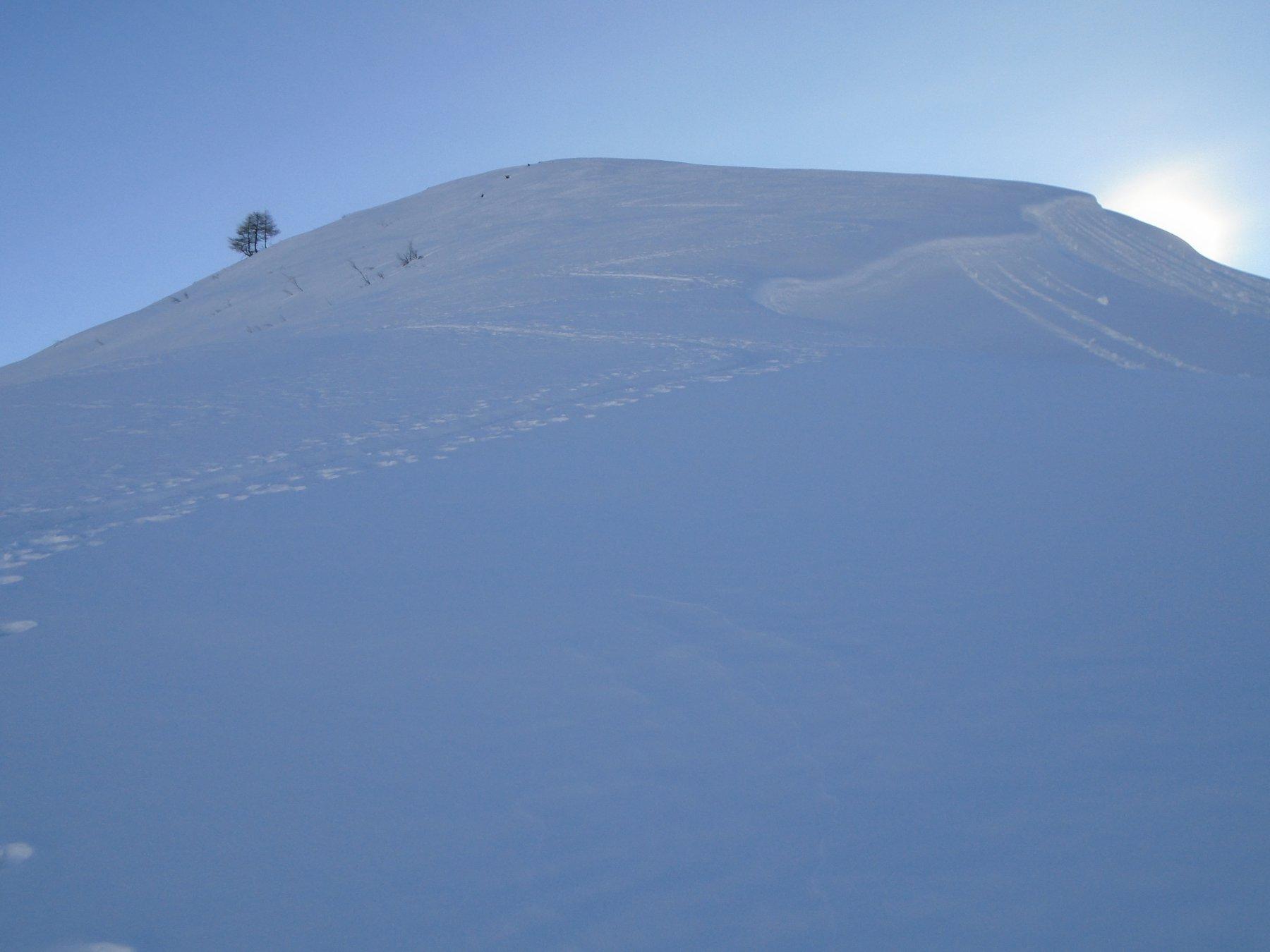 Bella traccia con uscita su Cima Gardun (2260m)