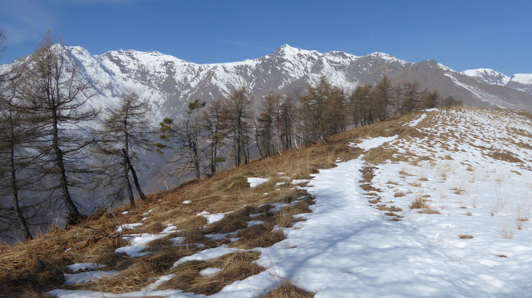 Dorsale del Monte Calvo