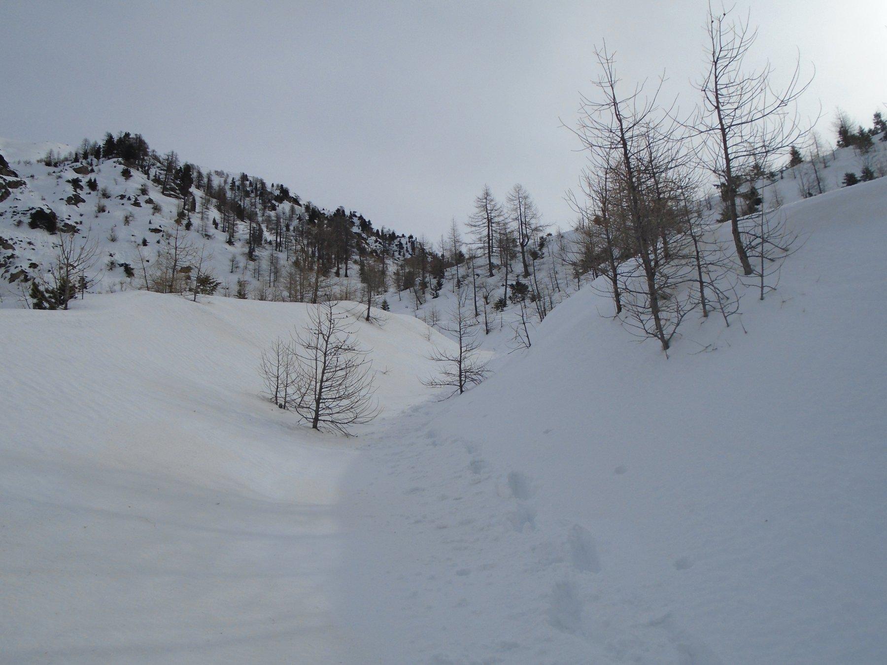 Ancora bella neve