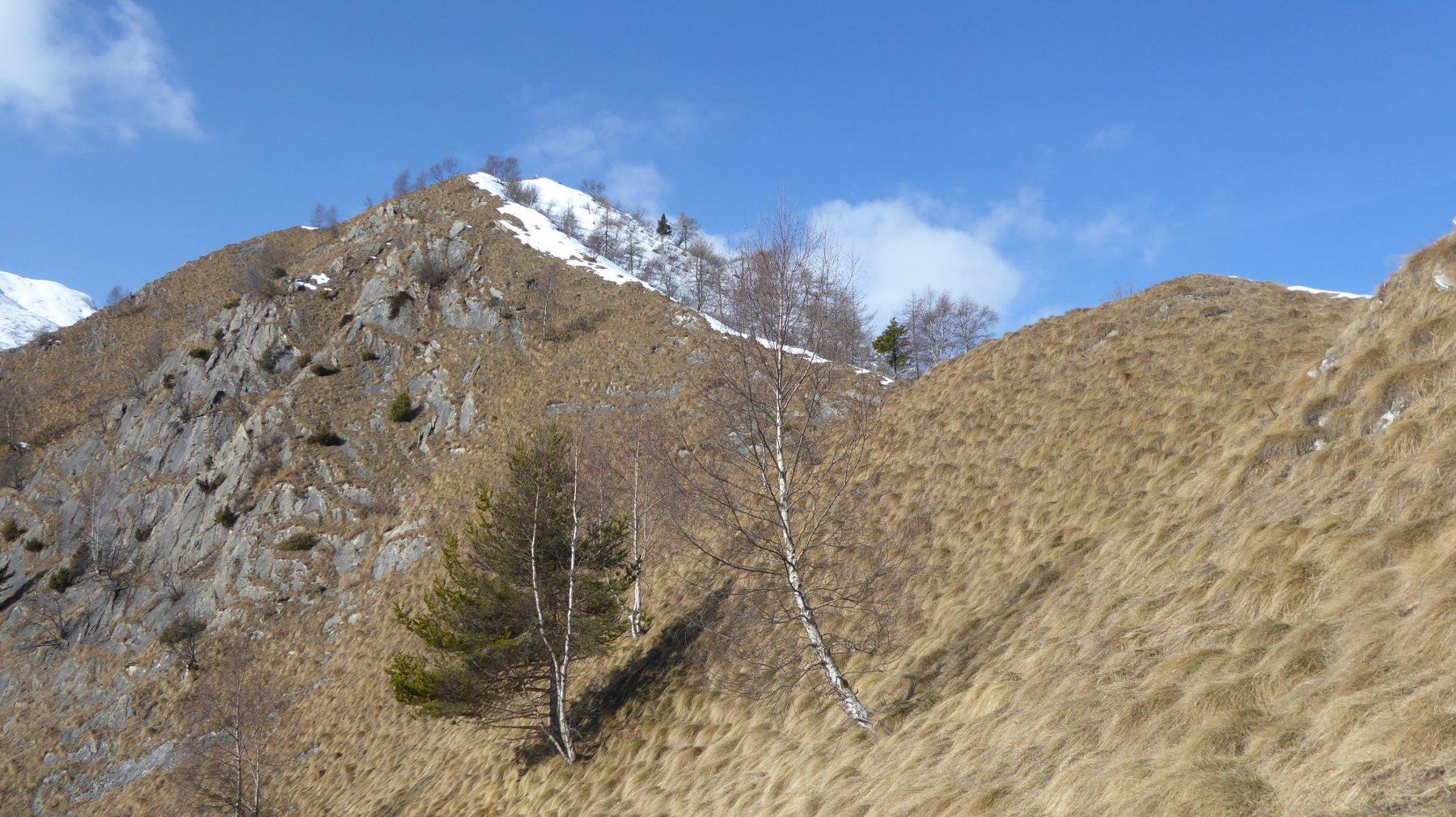 Punta del Sionei