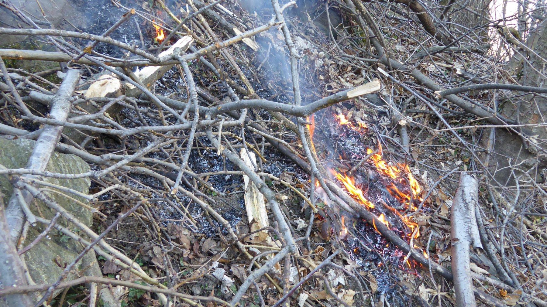 Principio di incendio nel bosco