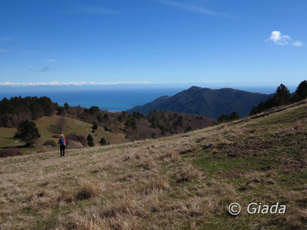 Panorama verso sud/est