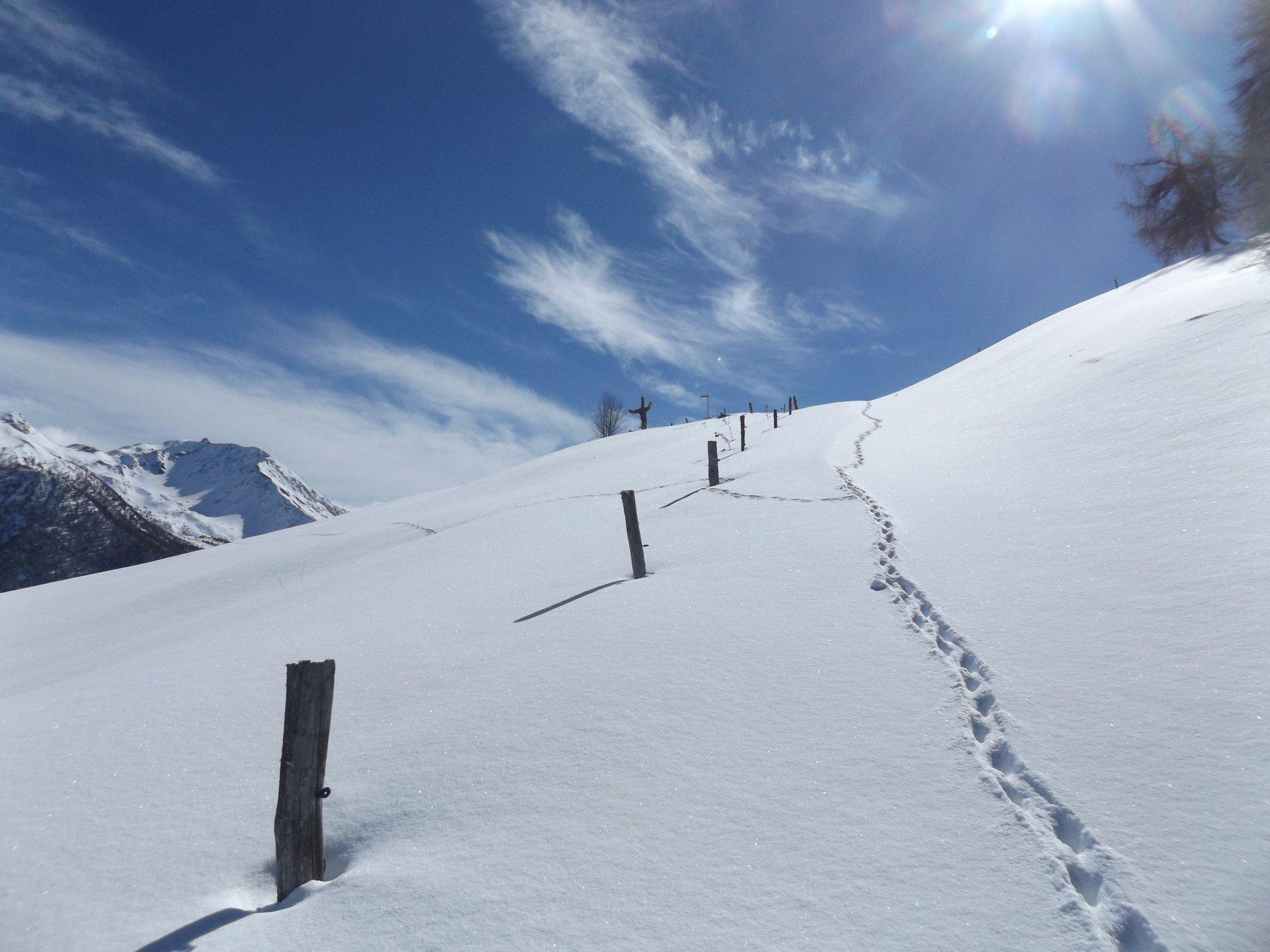 In vista dell'alpe Bren solo tracce di animali