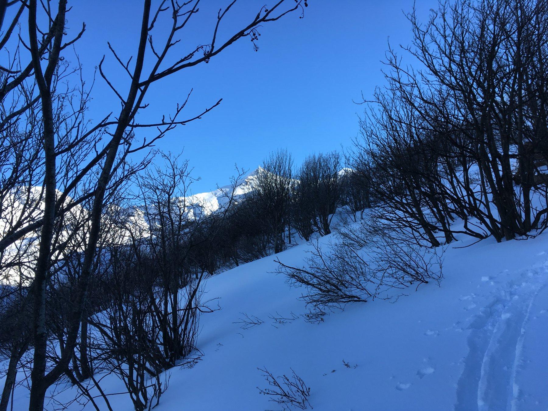 l'unica parte della boschina con un po' di neve morbida