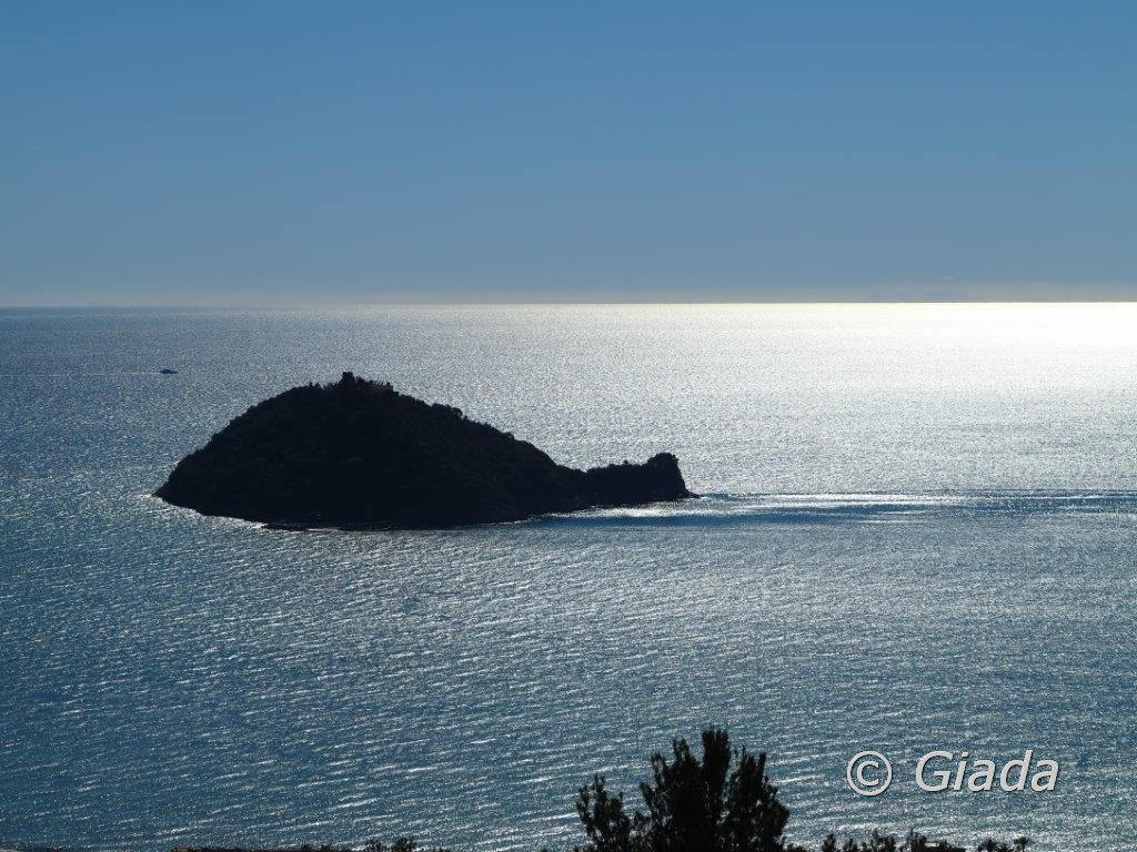 La Gallinara solca il mare