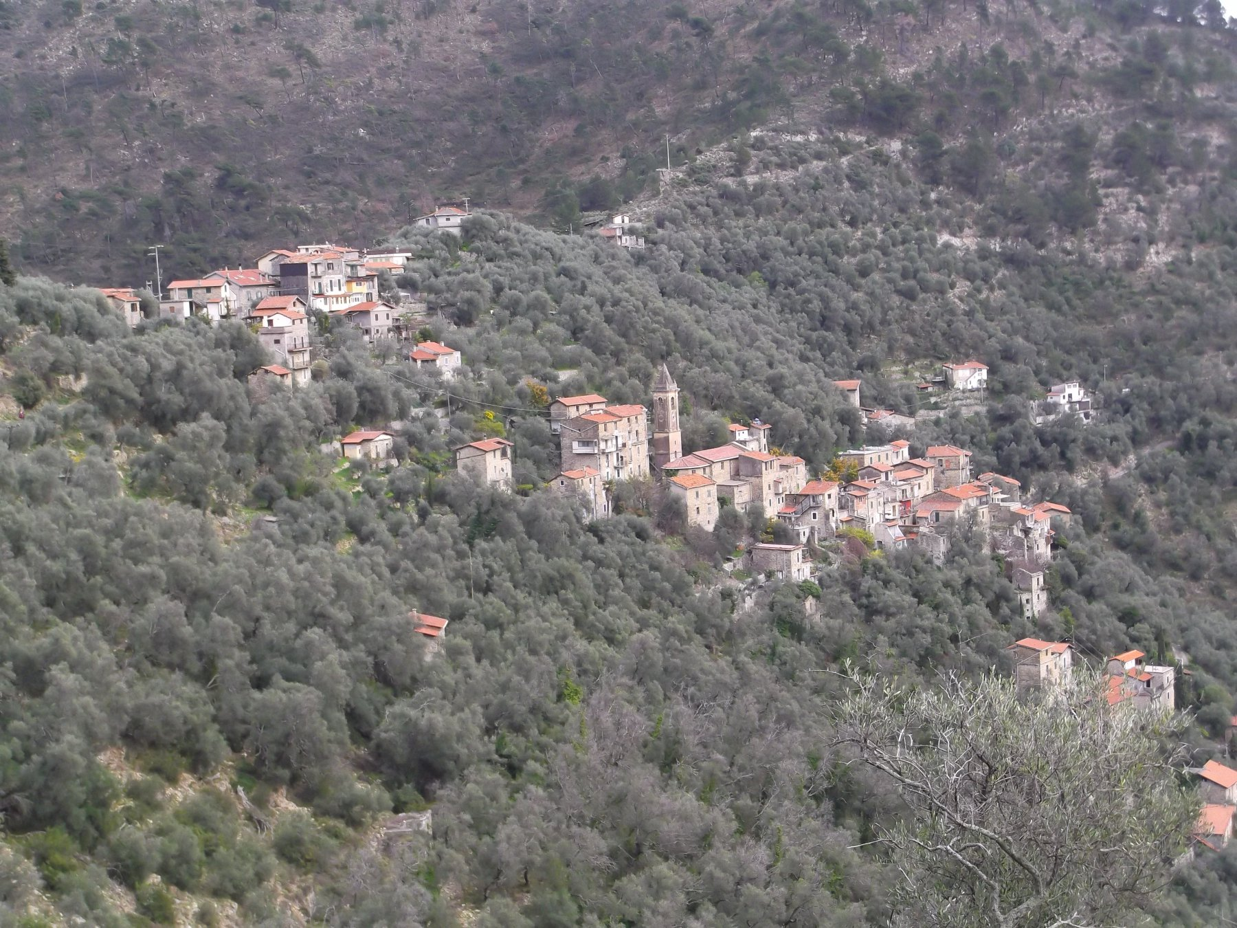 Bevera (Valle) da Torri, anello per Olivetta San Michele e Collabassa 2017-03-12