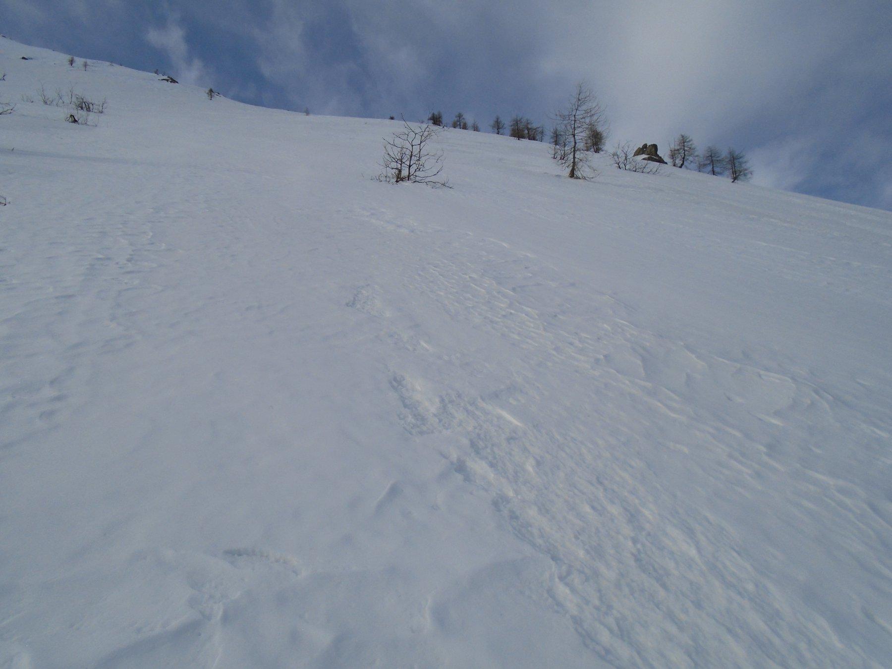 poi più ripido: neve liscia dura/increspata morbida