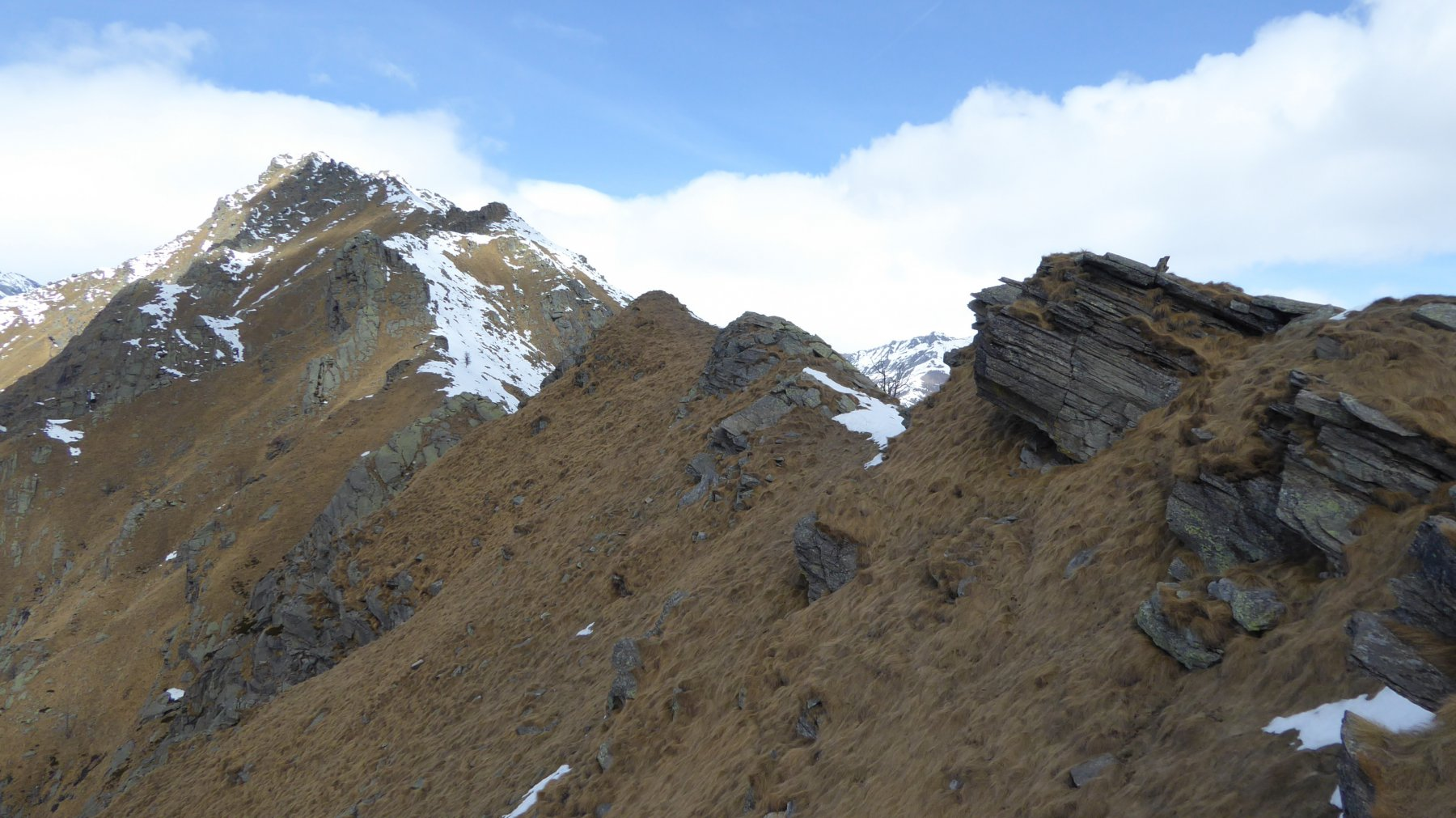 In primo piano al centro, l'erbosa Punta Furchia, in fondo, la Cima Fer 2621