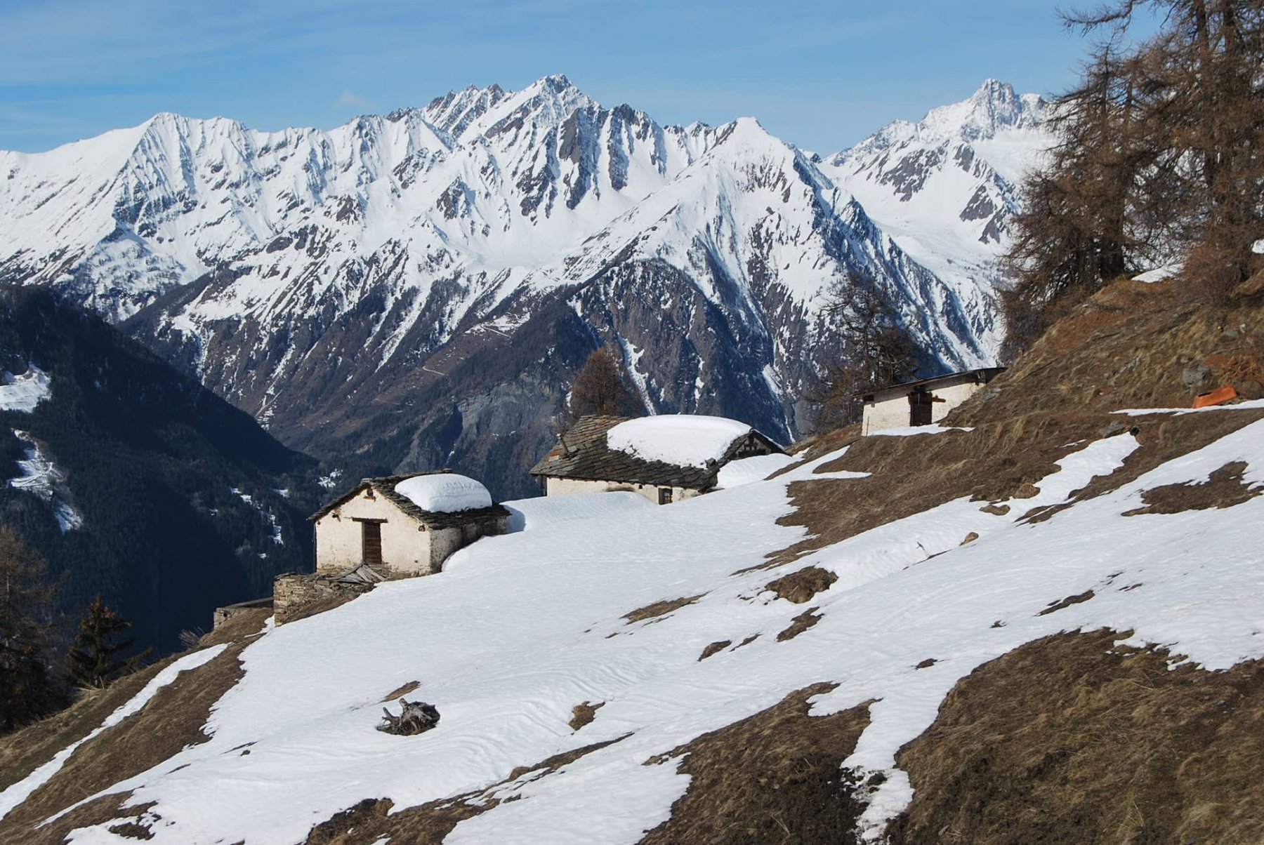 Gli alpeggi di Plan Bellard dalla strada
