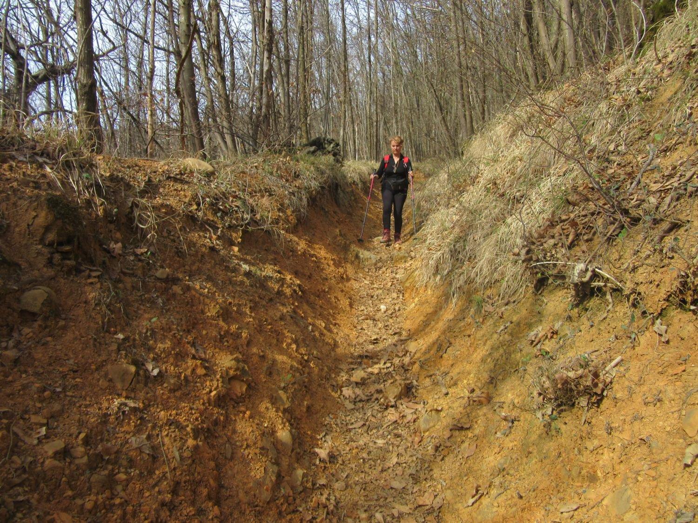 La caratteristica colorazione rossiccia del terreno lungo il sentiero