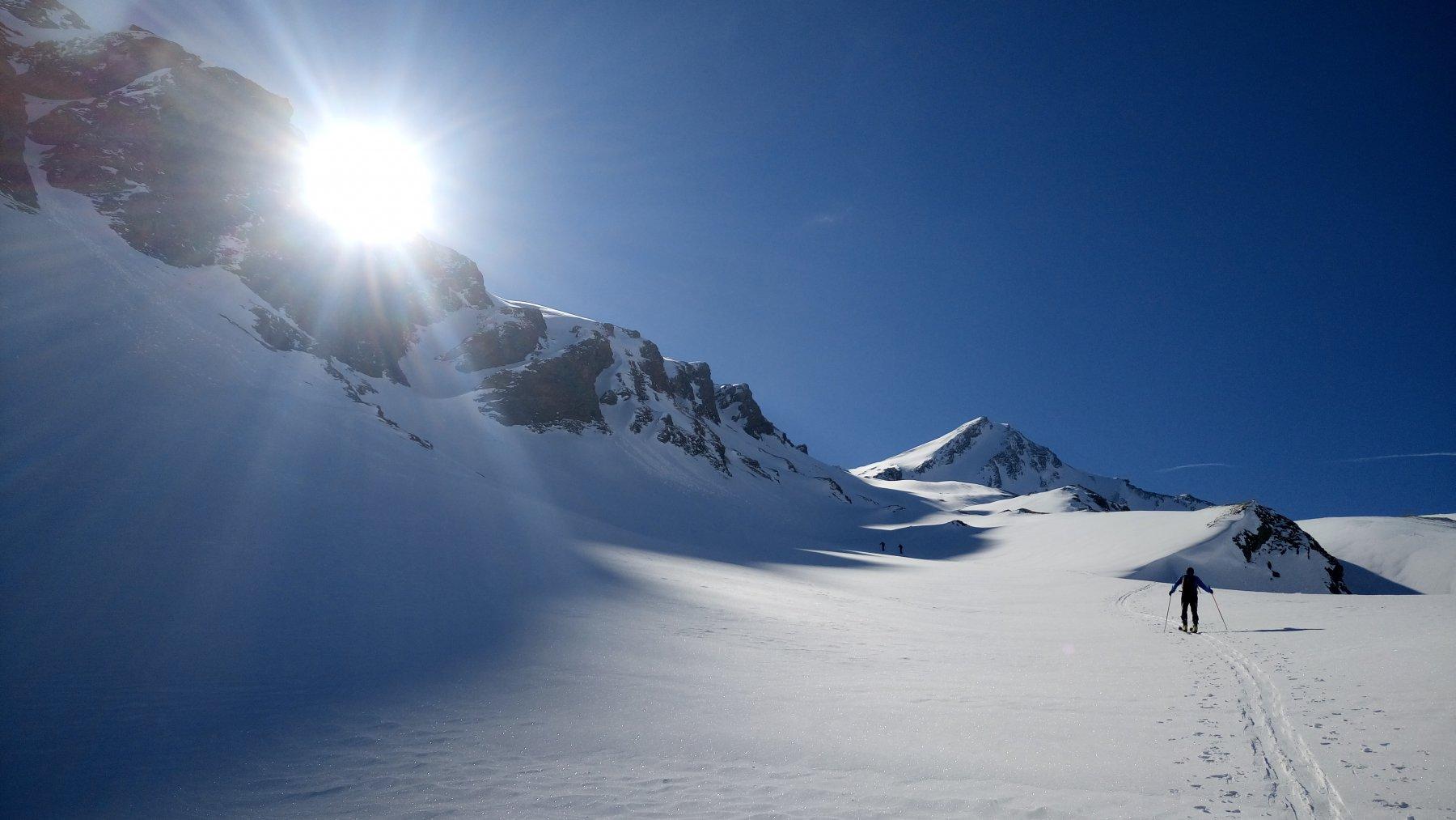 Gletscherhorn   spettacolo