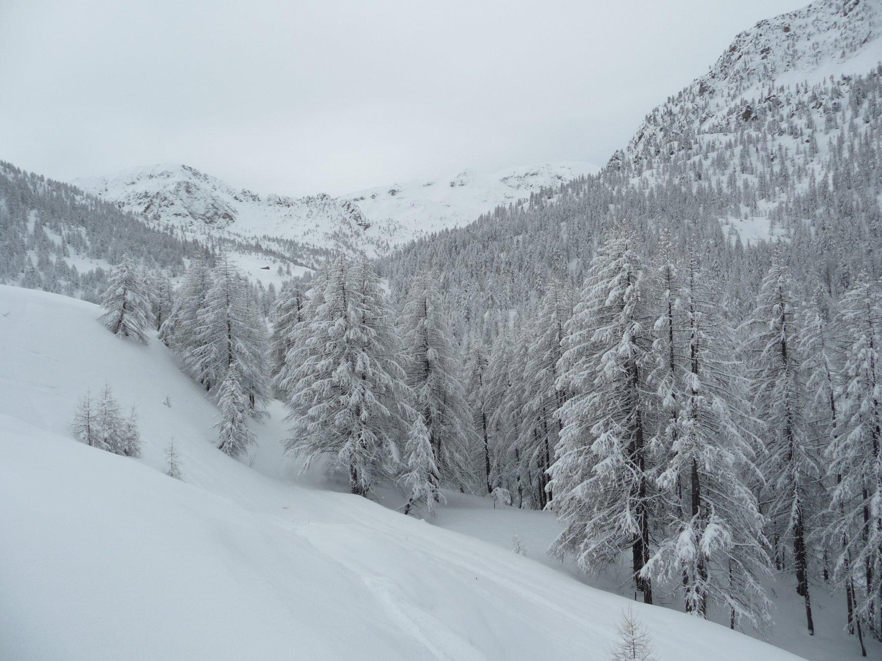 Paesaggi invernali