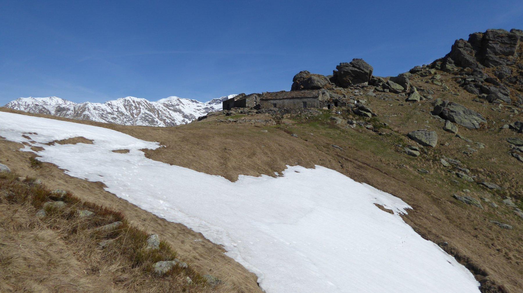 Arrivo all'Alpe Colli