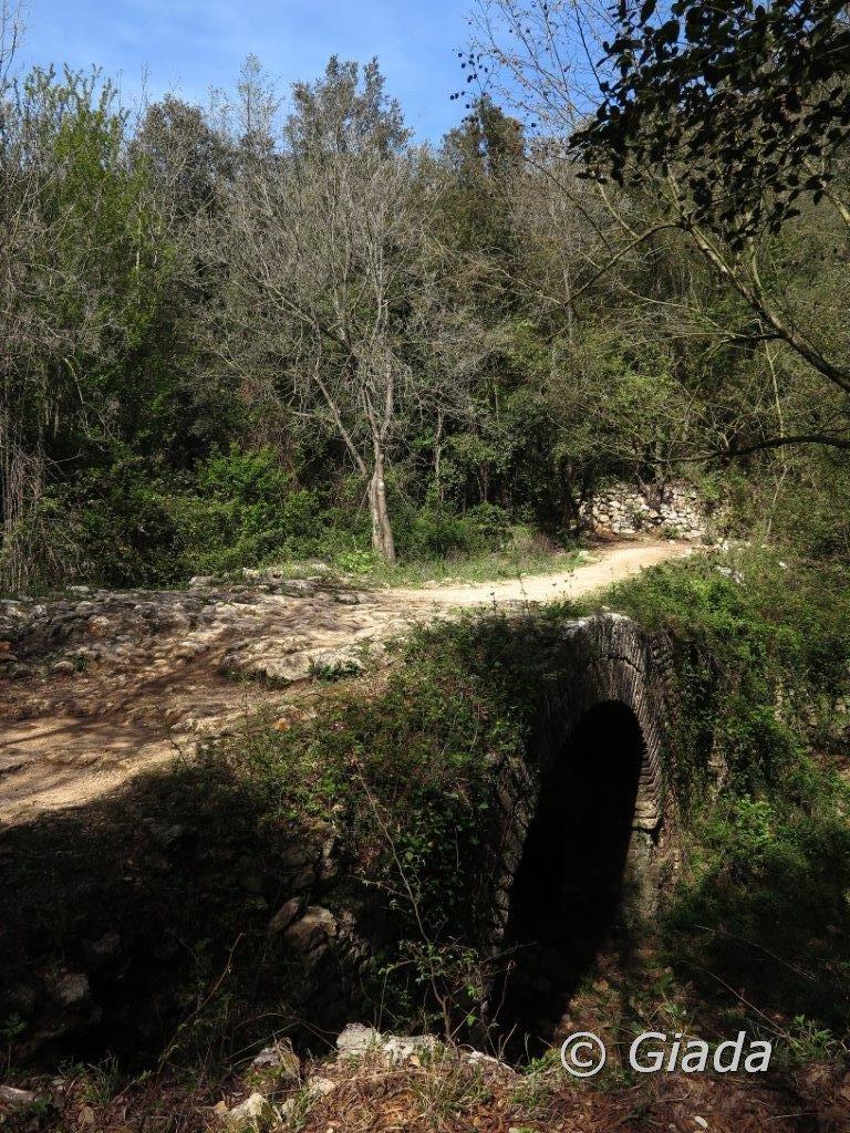 Ponte delle Voze