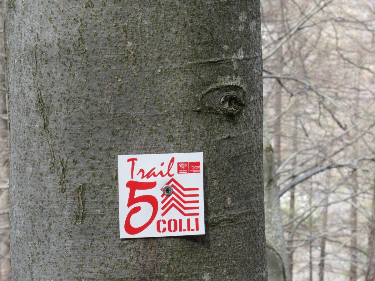 Il segnavia del Trail presente da Pian Gregnit in poi