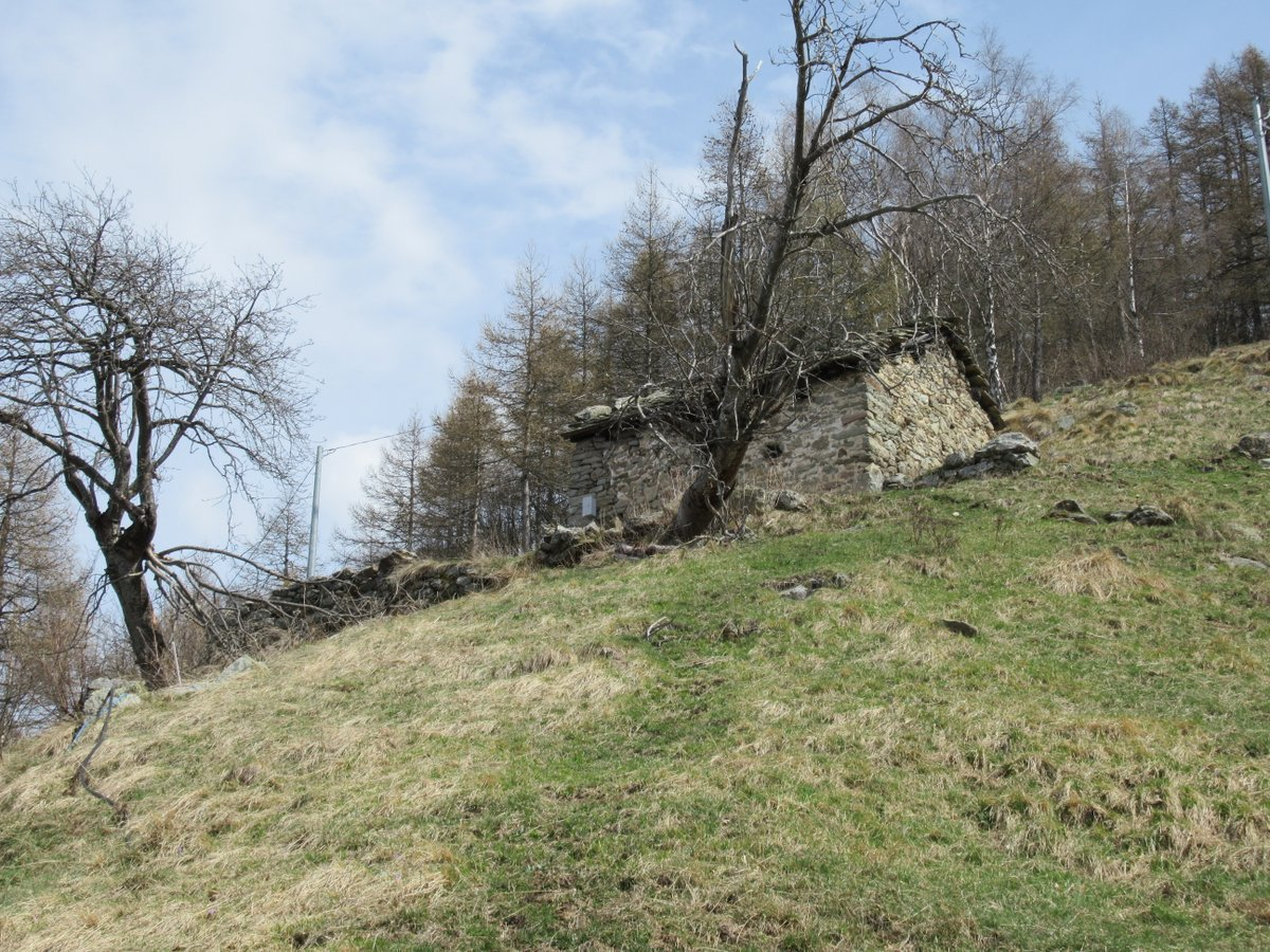 Alpe q. 1440