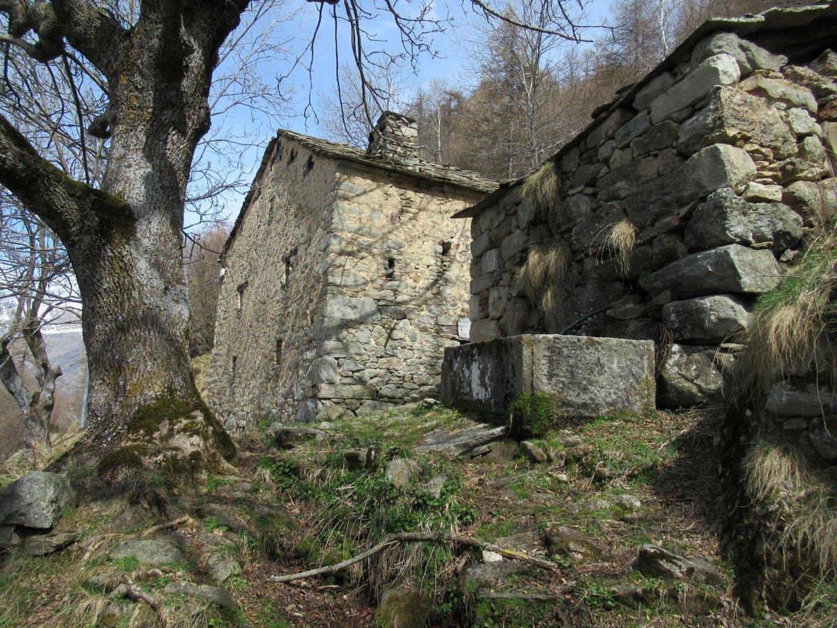Alpe Thuet q. 1388