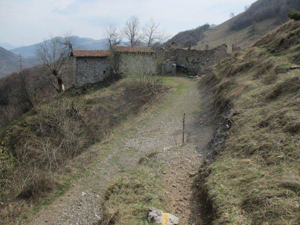 Casera Musciada