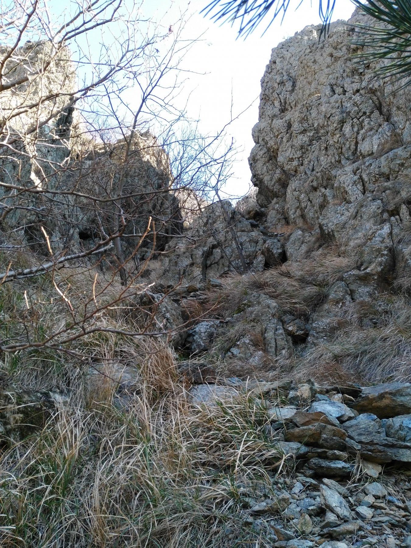 canale fra Querzola e Tuschetti