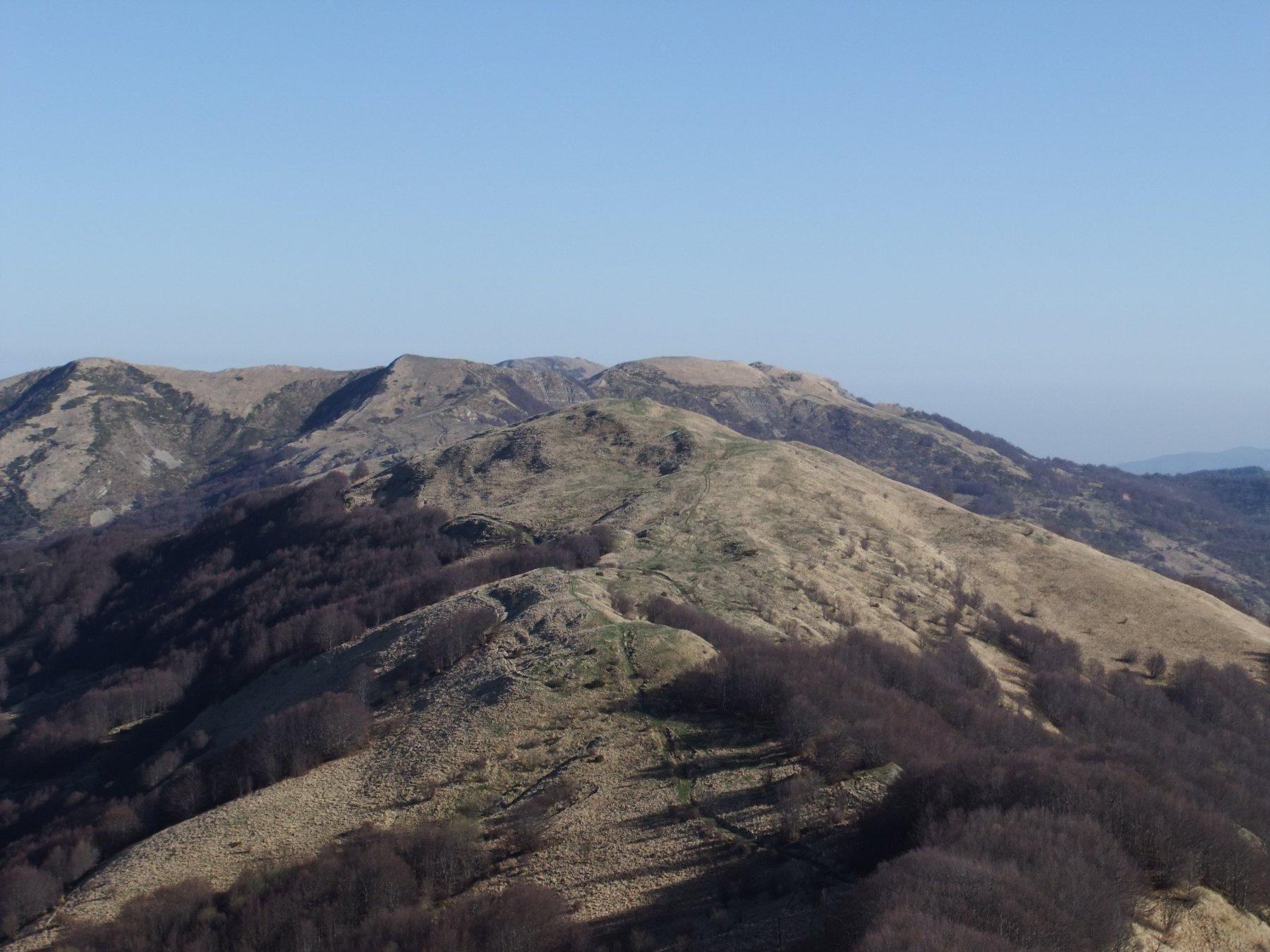 Dal Carmo , crinale con Poggio Rondino , Legnà e Cavalmurone