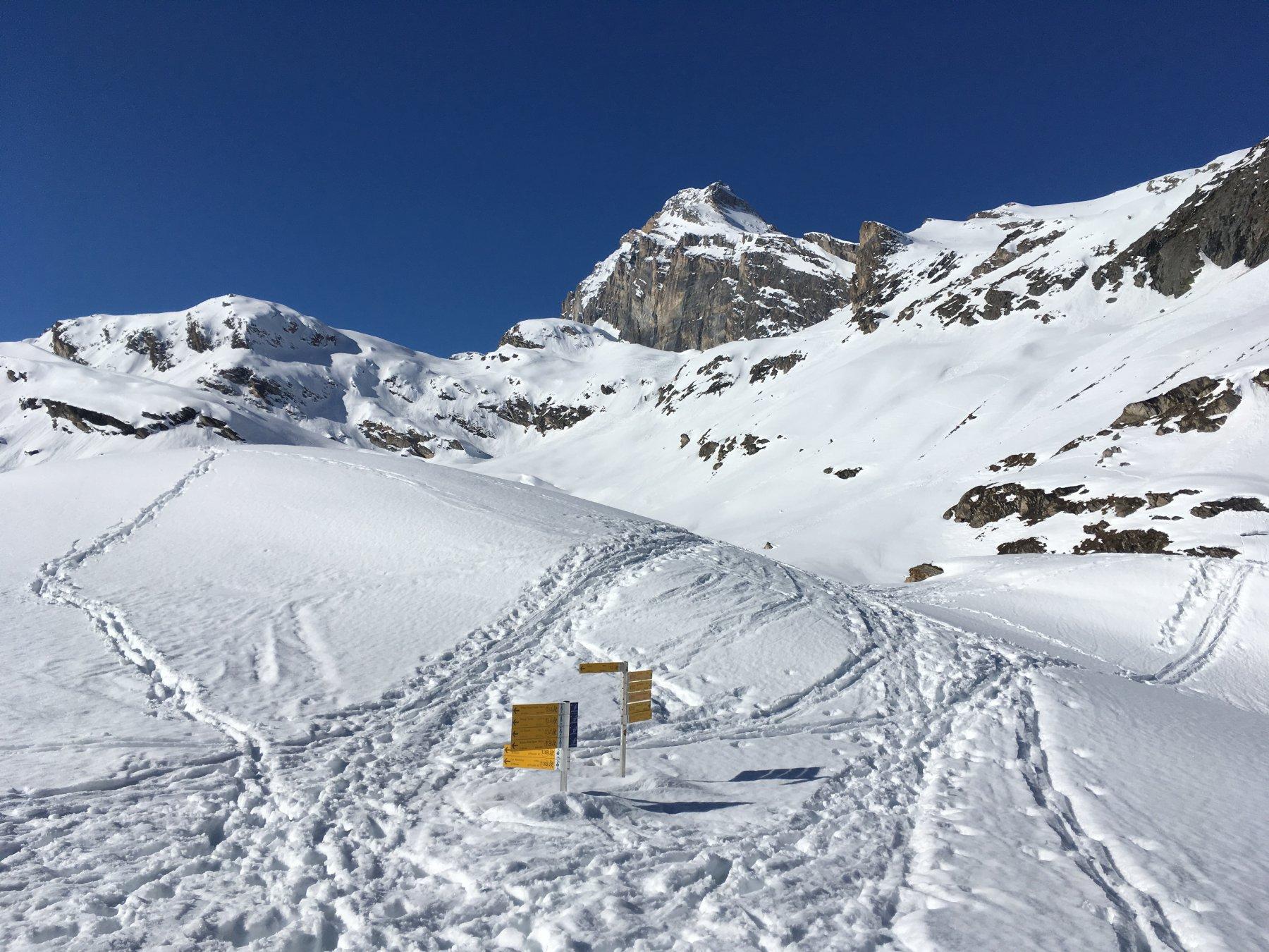 situazione neve al Benevolo