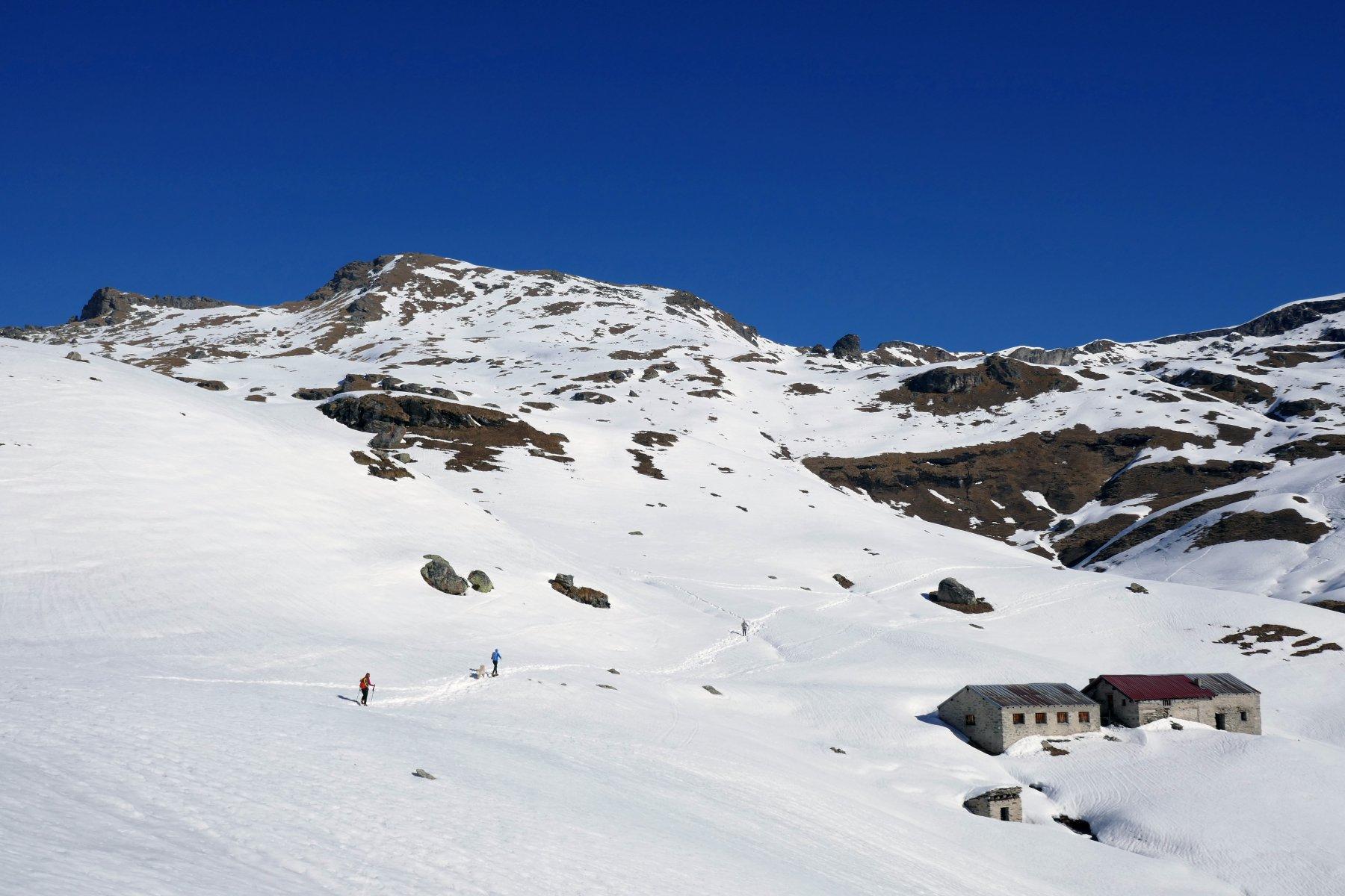 In salita sopra gli alpeggi Palasina