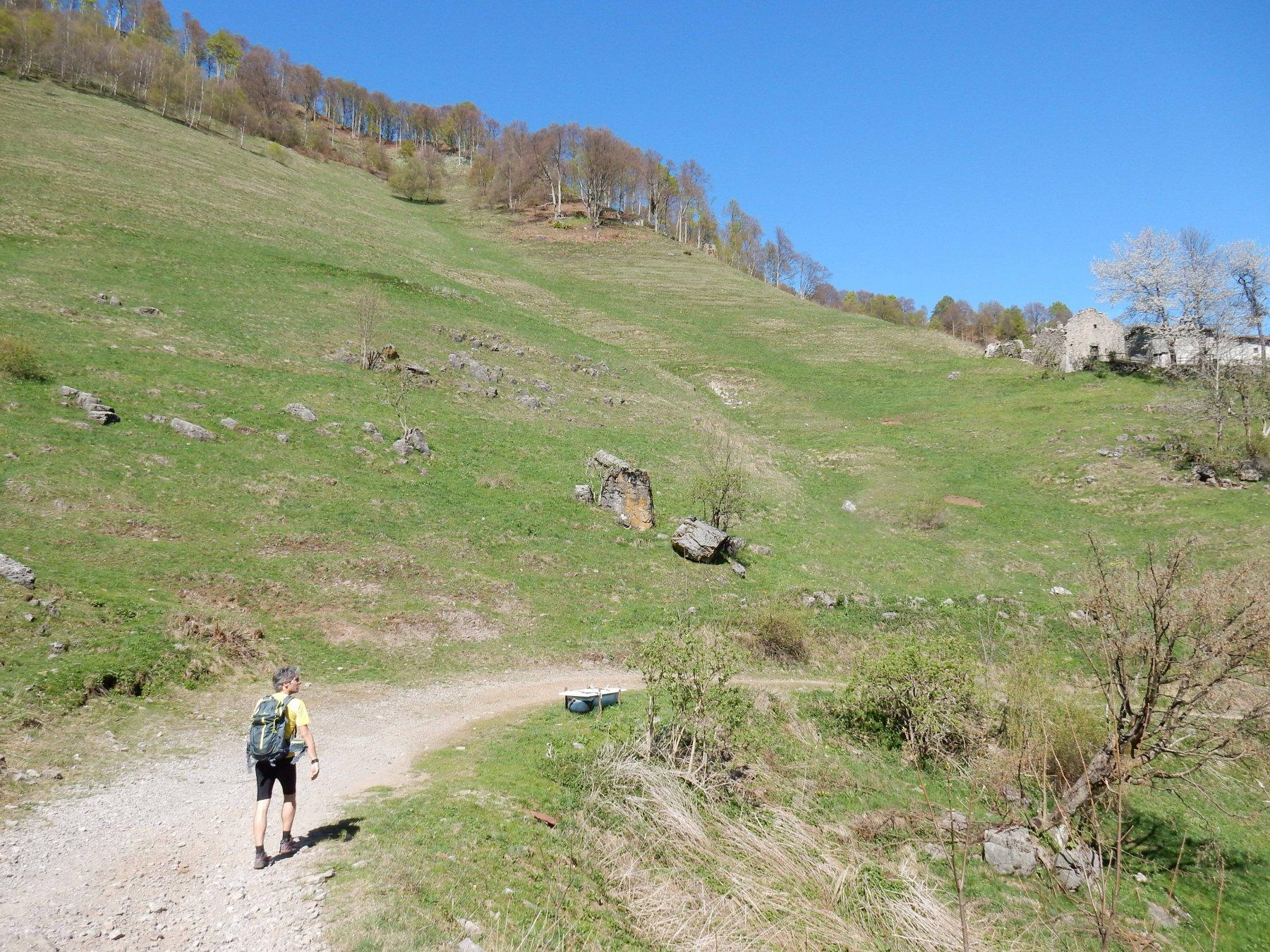 Passiamo l'Alpe Muschiada 1302mt.