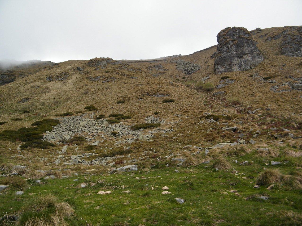 Il ripido pendio che porta all'Alpe Selle di Bele
