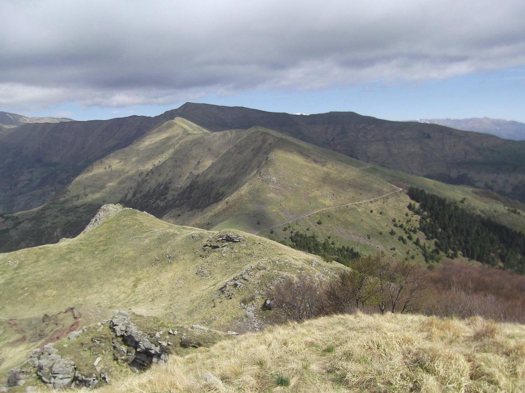 Cresta sud e Monega.