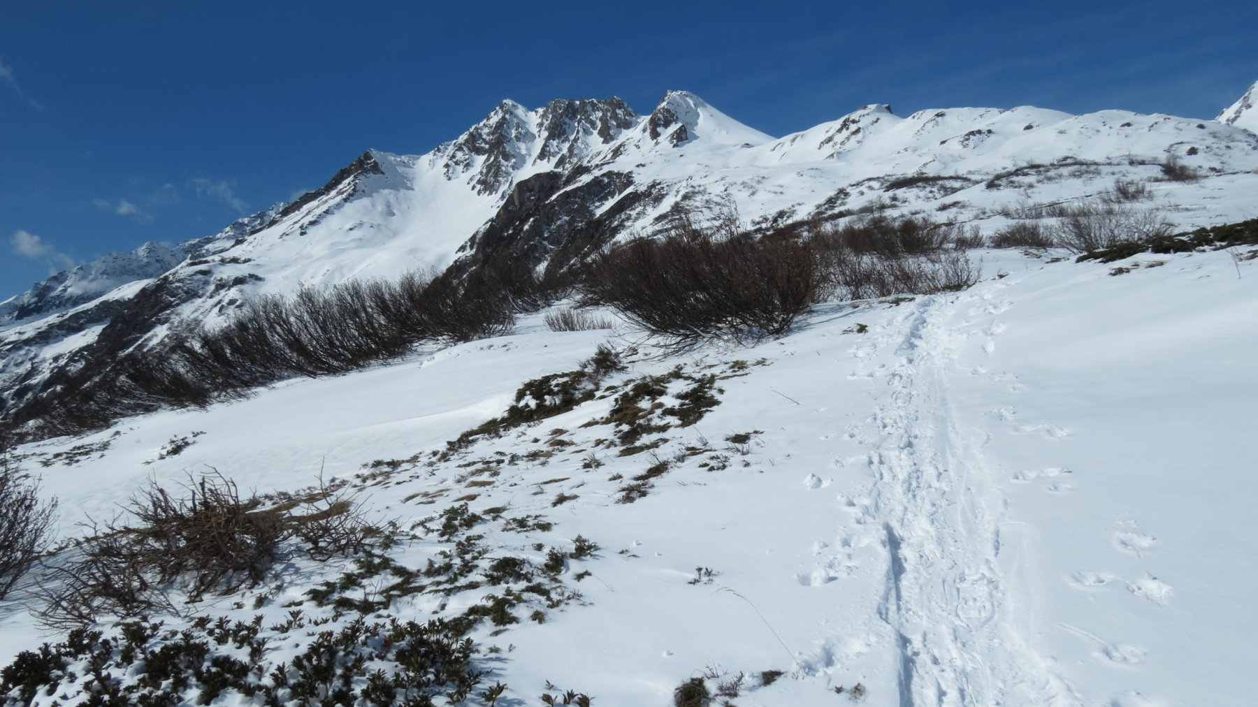 il primo pendio sopra l'Alpe Stafel