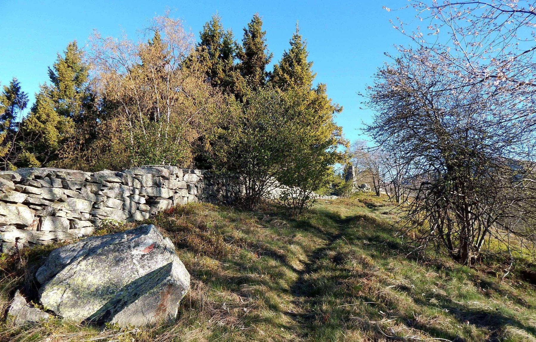 Grande muraglia della Cialma
