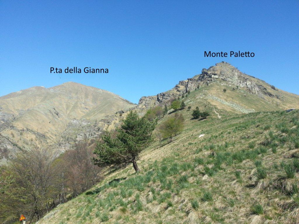Aquila (Punta dell') da Tora per il Colle del Besso, Colle Muretto, e Punta Gianna 2017-04-20
