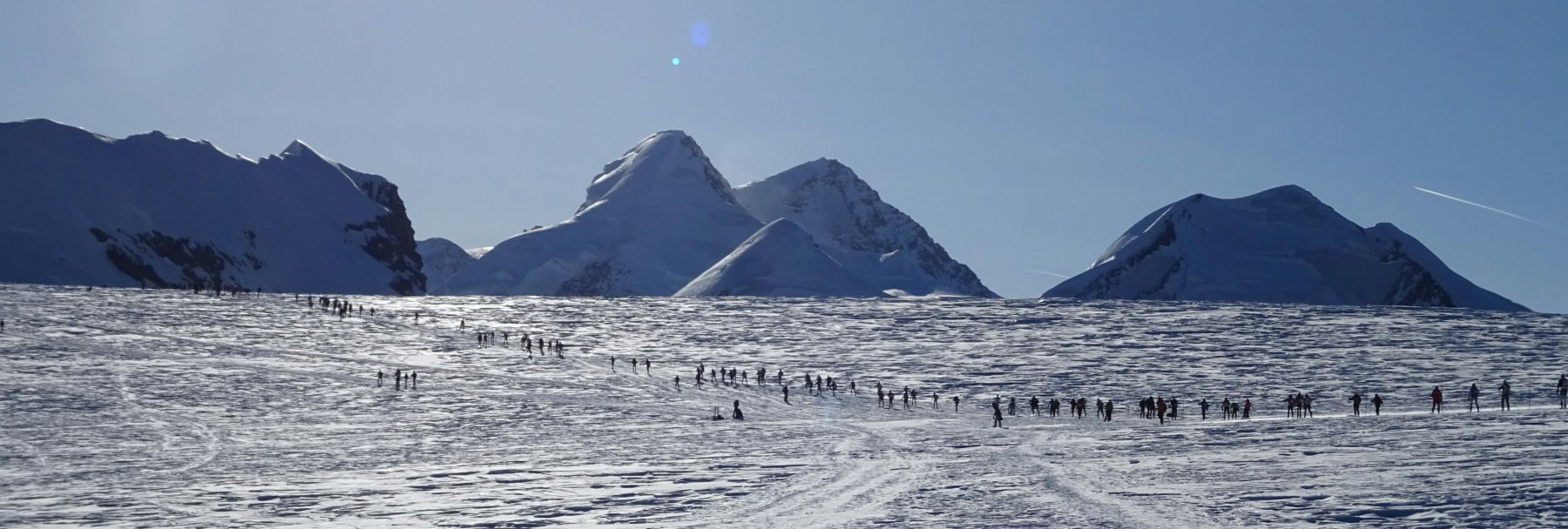 Formiche sul ghiacciaio di Verra