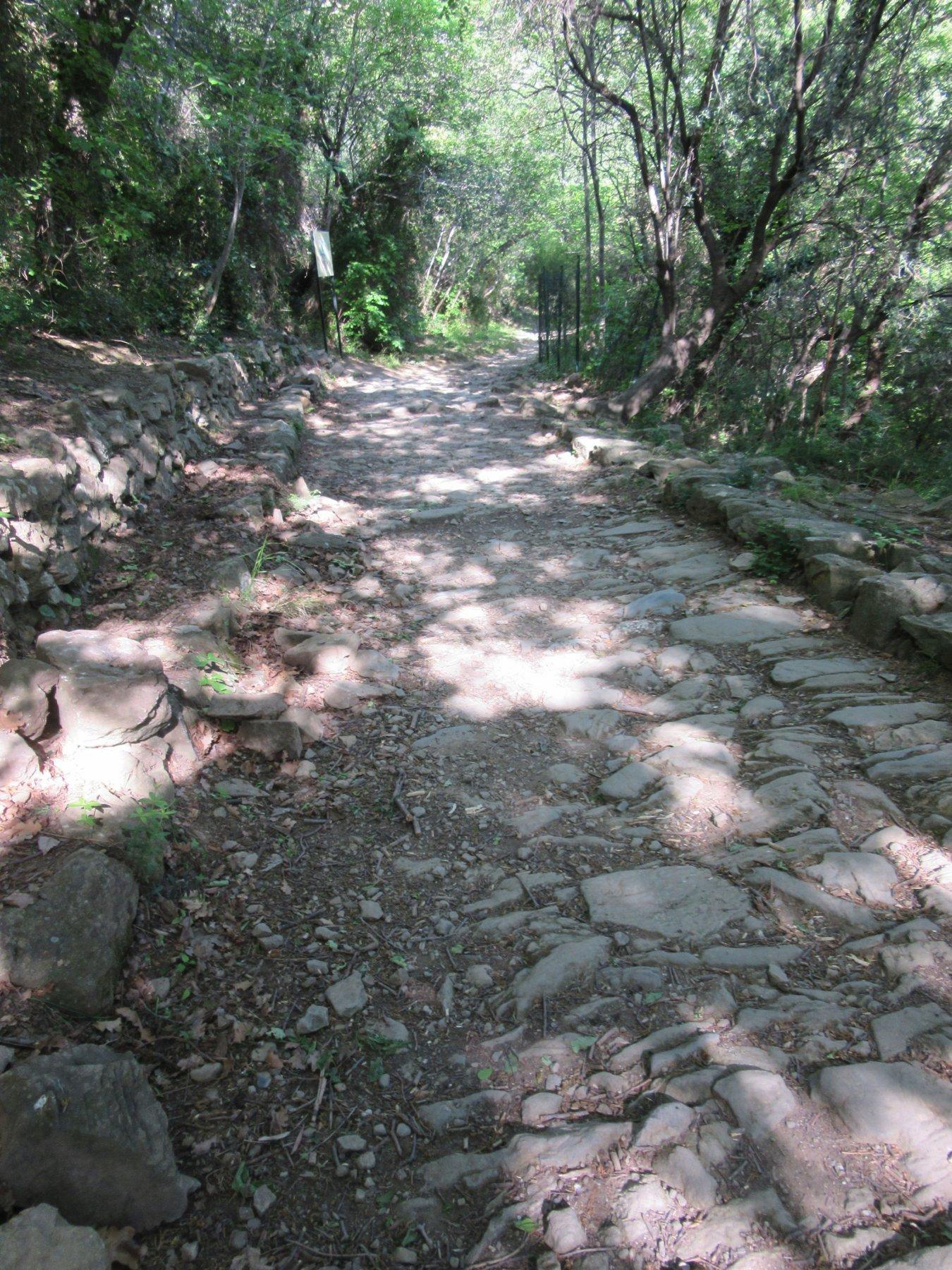 Un tratto integro e ancora perfettamente selciato della via Juilia Augusta