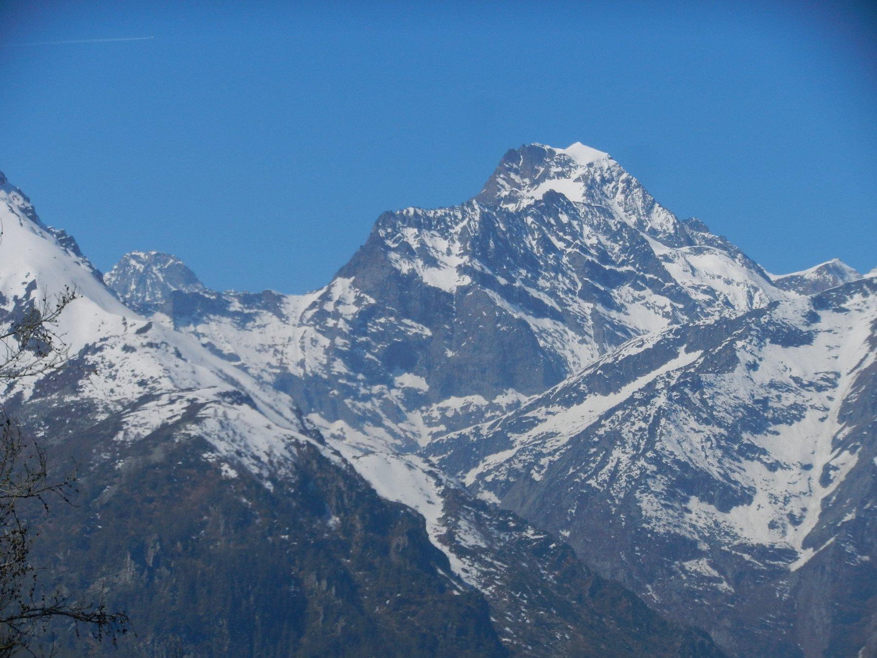 Ciamarella e Bessanese dall'Alpe di Mea