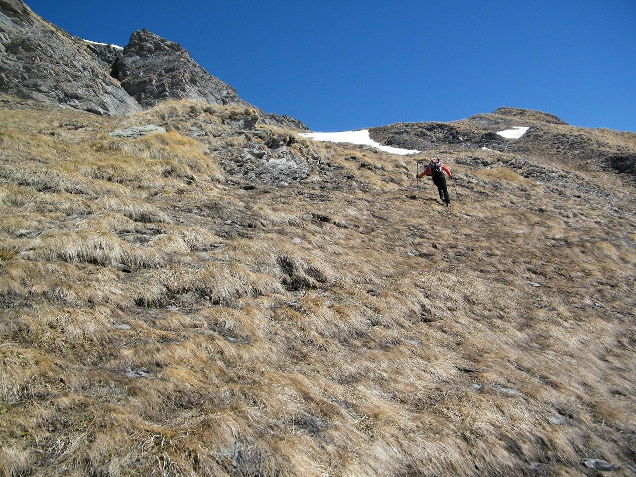 Sui ripidi pendii erbosi che, costeggiando le rocce sommitali, portano alla valletta erbosa.