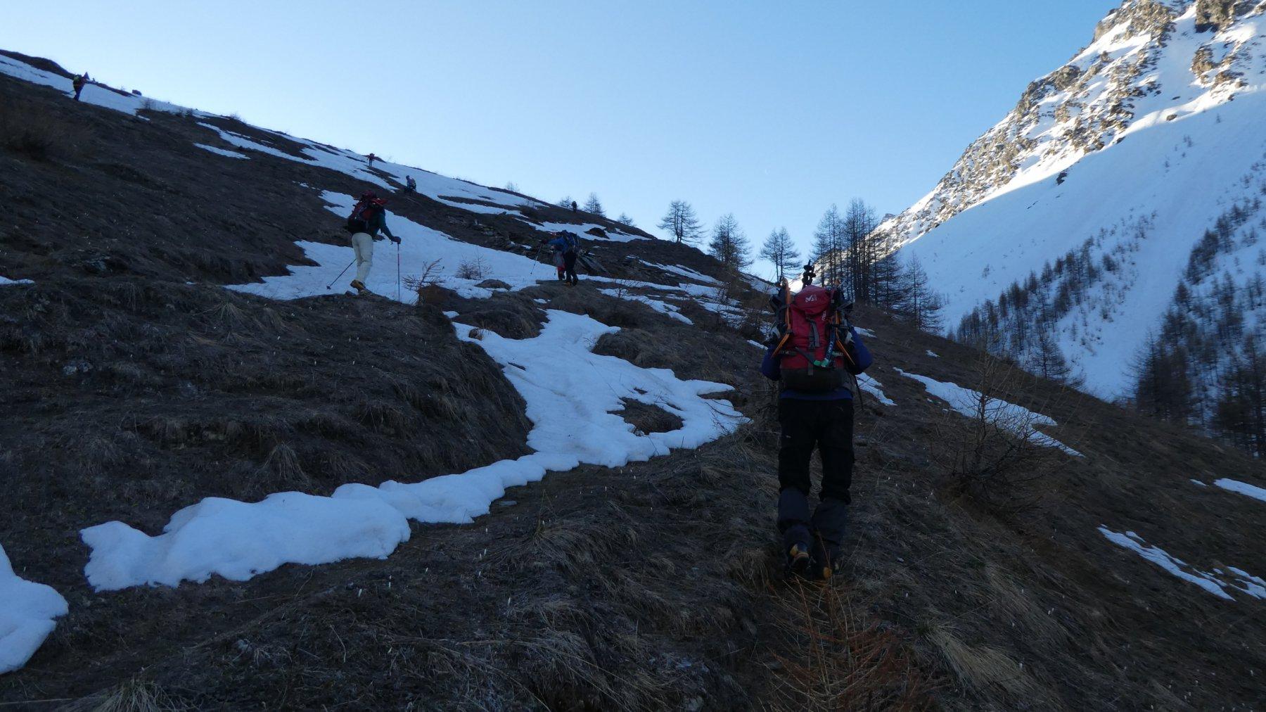 salendo nel primo tratto del Vallone d'Almiane a quota 2200 m