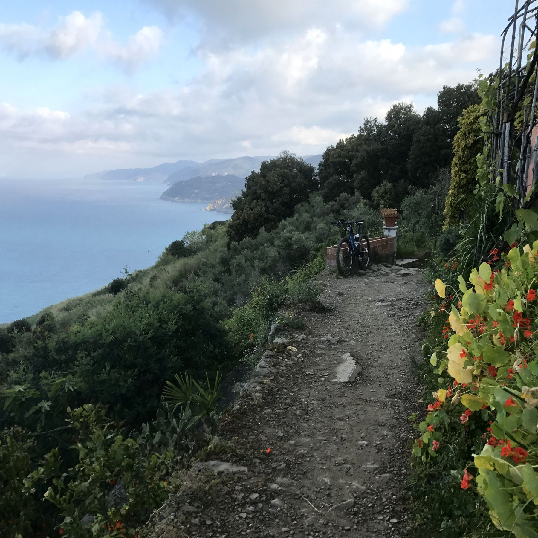 tratto agevole panoramico e ciclabile a Punta Mesco