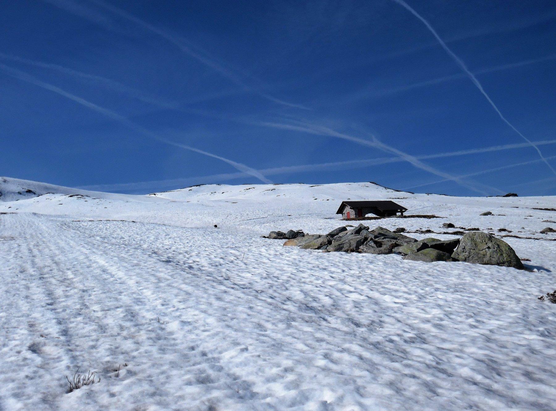 Neve da quota 1800