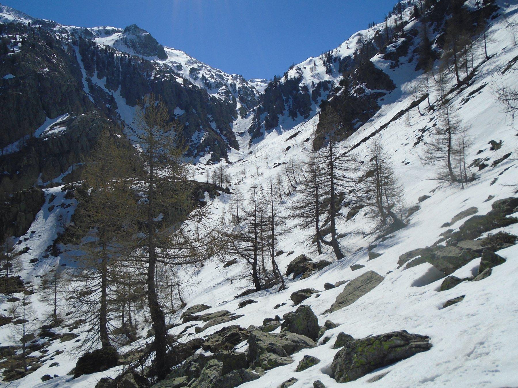 Neve continua dai pressi del Rif. Elena
