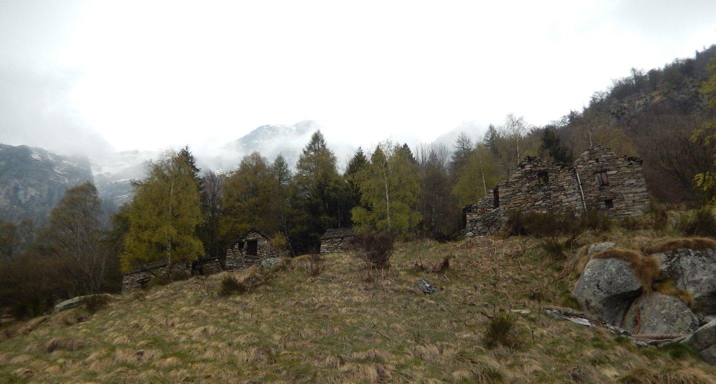 Loccia (Alpe) da Canfinello 2017-04-30